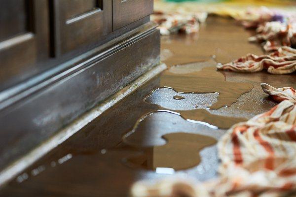 washington dc water restoration services